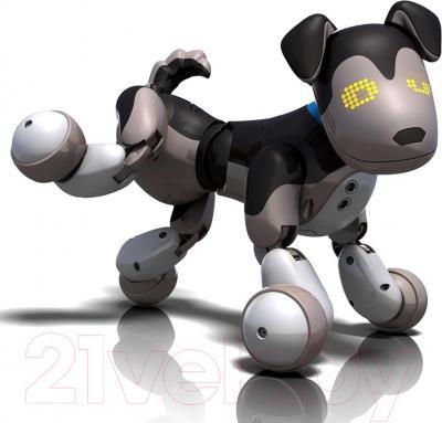 Интерактивная игрушка Zoomer Шэдоу (20068496) - общий вид