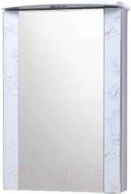 Шкаф с зеркалом для ванной Акваль Токио 50 (ТОКИО.04.50.01.L)