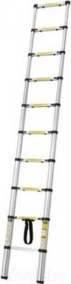 Приставная лестница Stern Austria ALT20A - общий вид