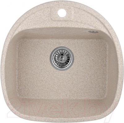 Мойка кухонная Granula GR-5050 (классик) - общий вид