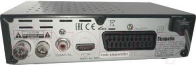 Тюнер цифрового телевидения Simpatio PTHD1626 - вид сзади
