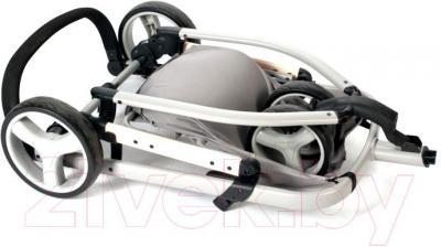 Детская универсальная коляска Anex Zana Putti 2 в 1 (бежевый) - в сложенном виде