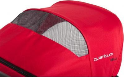 Детская прогулочная коляска EasyGo Quantum Black (Carbon) - окошко для мамы
