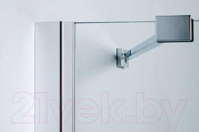 Стеклянная шторка для ванны Sanplast PW2/FREE-90-S - детали