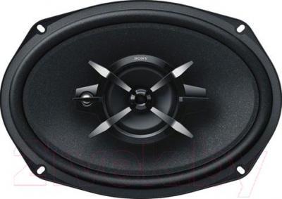 Коаксиальная АС Sony XS-FB6930 - общий вид
