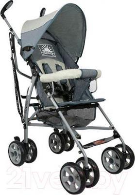 Детская прогулочная коляска INFINITY Echo (серый) - общий вид