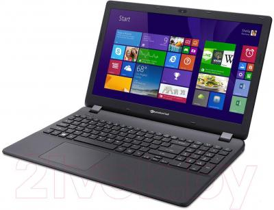 Ноутбук Packard Bell TG71BM-C38X (NX.C3UEU.001) - вполоборота