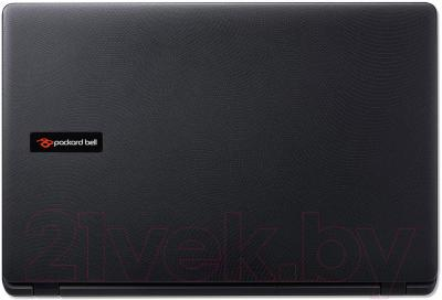 Ноутбук Packard Bell TG71BM-C8N0 (NX.C3UEU.004) - вид сзади