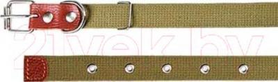 Ошейник Collar 0240 (тесьма) - общий вид