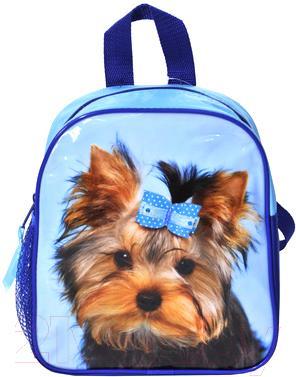 Детский рюкзак Paso 14-304PN - общий вид
