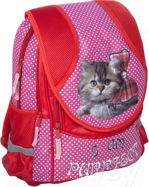Школьный рюкзак Paso 14-048C - общий вид
