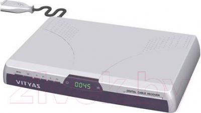 Тюнер цифрового телевидения Витязь DСR-805М - общий вид