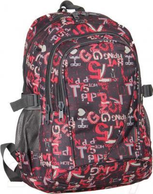 Рюкзак городской Paso 15-1818B - общий вид