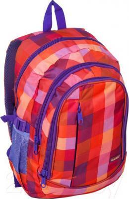 Рюкзак городской Paso 15-1827A - общий вид