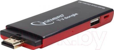 Медиаплеер Gembird SMP-TVD-002 - общий вид