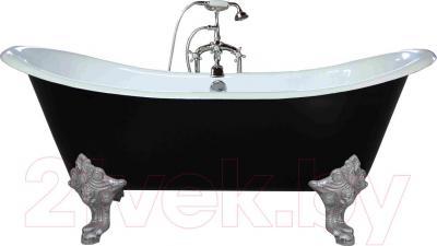 Ванна чугунная Goldman Glossy 1830x770 (черный, ноги серебро) - общий вид