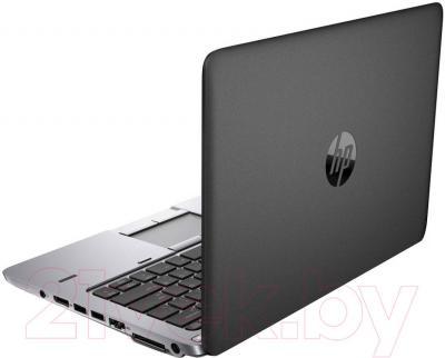 Ноутбук HP EliteBook 725 G2 (F1Q15EA) - вид сзади