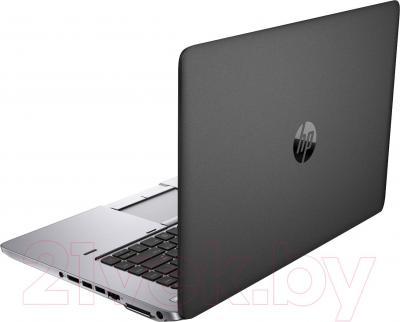 Ноутбук HP EliteBook 755 G2 (F1Q26EA) - вид сзади