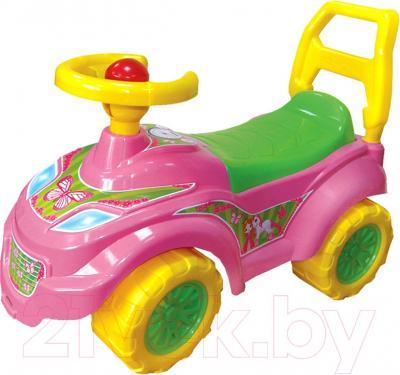 Каталка детская ТехноК Автомобиль для прогулок (0793) - общий вид