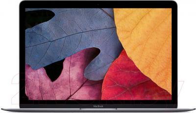 Ноутбук Apple MacBook (MK4M2RS/A) - общий вид