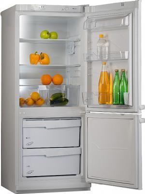 Холодильник с морозильником Pozis Мир 102-2 (Silver) - общий вид