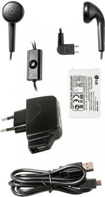 Мобильный телефон LG GX500 Black - аксессуары