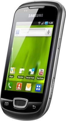Смартфон Samsung S5570 Galaxy Mini Gray (GT-S5570 AAISER) - вид сбоку