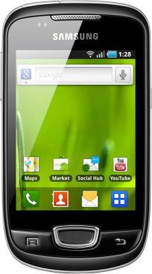 Смартфон Samsung S5570 Galaxy Mini Gray (GT-S5570 AAISER) - вид спереди