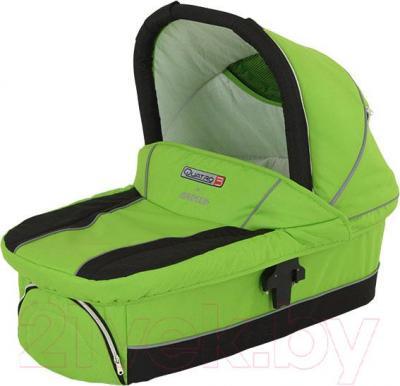 Детская универсальная коляска Adamex Quatro 3 (2 в 1) (зеленый) - люлька