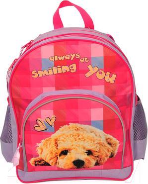 Школьный рюкзак Paso 13-157C - общий вид