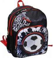 Школьный рюкзак Paso 15-163F -