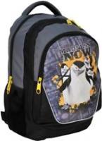 Школьный рюкзак Paso PMG-367 -