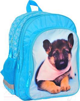 Школьный рюкзак Paso RAE-080 - общий вид