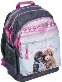 Школьный рюкзак Paso RHE-116 - общий вид