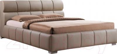 Двуспальная кровать Signal Bolonia (160x200, капучино)