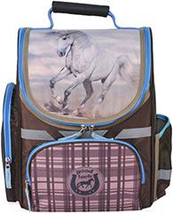 Школьный рюкзак Paso 15-525KN - общий вид