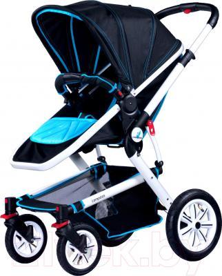 Детская универсальная коляска Caretero Compass (синий) - общий вид