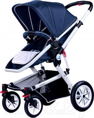 Детская универсальная коляска Caretero Compass (темно-синий) - общий вид