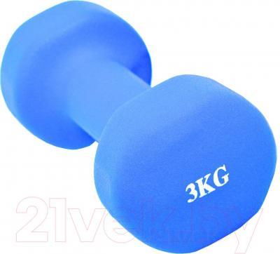 Гантель NoBrand 3kg (голубой)