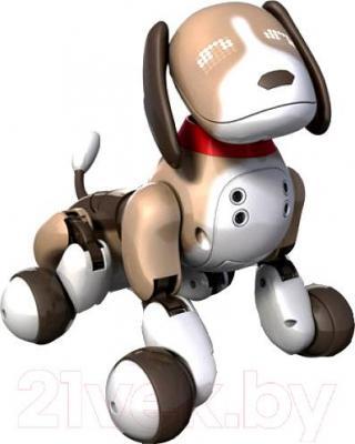 Интерактивная игрушка Zoomer Бентли (20068498) - общий вид