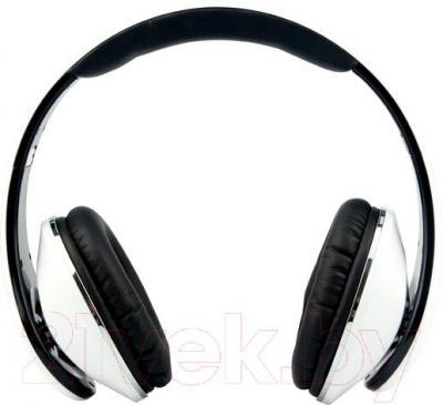 Наушники-гарнитура Microlab K360 (черно-белый) - общий вид