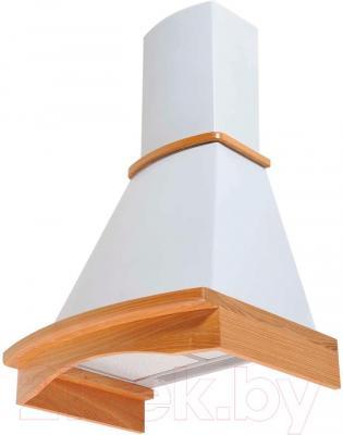 Вытяжка купольная Pyramida R 60U (белый) - общий вид