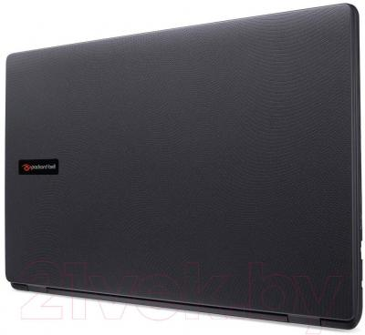 Ноутбук Packard Bell EasyNote LG71BM-P2YX (NX.C3VER.004) - общий вид