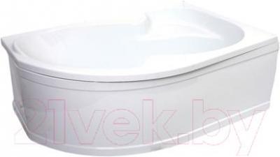Ванна акриловая Artel Plast Валерия R (160х105) - общий вид