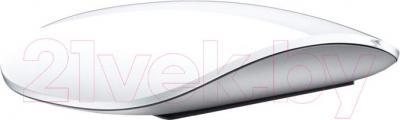 Мышь Apple Magic Mouse MB829ZM/B