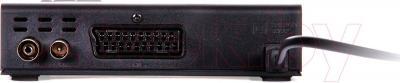 Тюнер цифрового телевидения TV Star T910 USB PVR - разъемы изделия