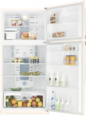 Холодильник с морозильником Samsung RT72SAVB1 - общий вид
