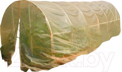 Теплица с пленкой Метлес - 1 ПВД 150мк 5.2м (с чехлом)