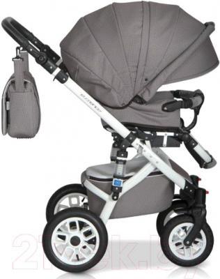 Детская универсальная коляска Expander Mondo Ecco 2 в 1 (31) - прогулочная