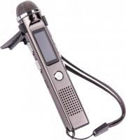 Диктофон Ritmix RR-150 (8Gb) -